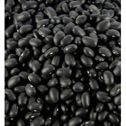Fagioli neri bio 5kg