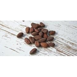Fave di Cacao raw bio