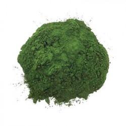 Chlorella bio in polvere bio